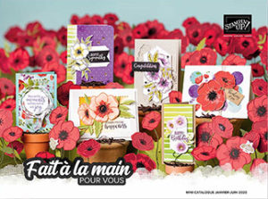 Mini-catalogue Printemps/Ete 2020 Stampin'Up!